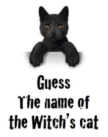 Guess the name of the Witch's Cat Halloween Fundraiser