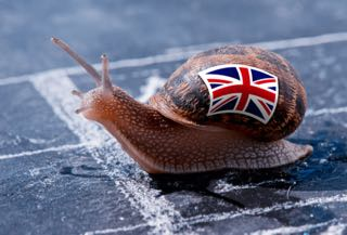 British Racing Snail