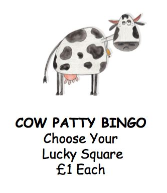 Cow Patty Bingo Poster