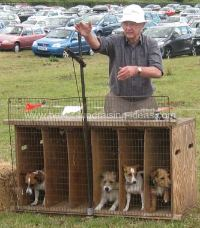 Terrier Racing Starting Gate