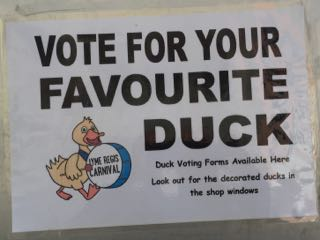 Lyme Regis Duck Competition Voting Poster