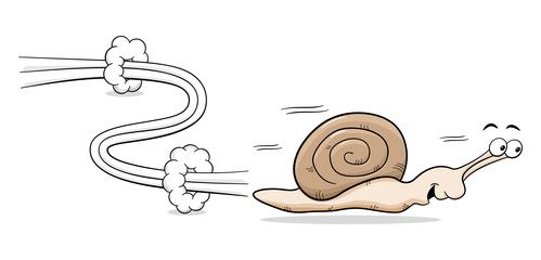 Racing Snail Cartoon