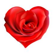 Valentine Fundraising Ideas