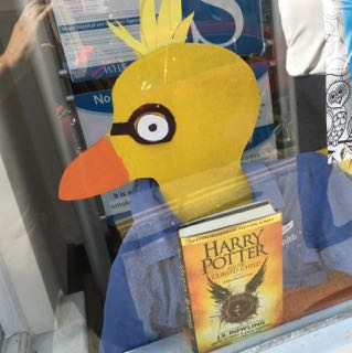 Lyme Regis Carnival Duck Competition Harry Potter