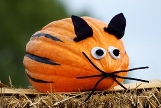 Decorated Pumpkin Competition